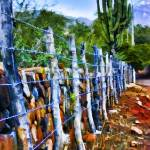 """Barbed-Wire Fence Landscape"" by johncorney"