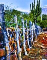 Barbed-Wire Fence Landscape