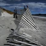 """Fallen Fence"" by candiselee"
