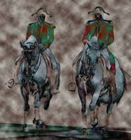 Contemporary Lipizzaners