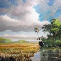Everglades gallery
