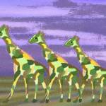 """Giraffe Run"" by magins"