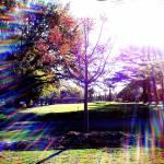 """""""Sparkles"""" by emw314"""