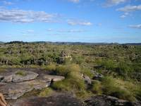A View of Kakadu