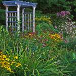 """Arbor Perennial Garden"" by crazysuncompany"