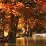 """""""Guadalupe River Fall"""" by Kirby"""