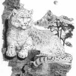 """""""Snow Leopard"""" by gwhittart"""