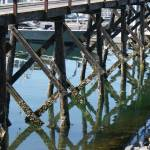 """Bridge reflections"" by JenLewis"