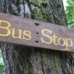 """bus stop"" by JenLewis"