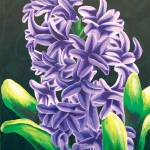 """Hyacinth I"" by dpj"