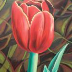 """Red Tulip"" by dpj"
