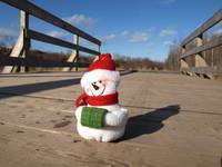 Snowman waiting for Christmas