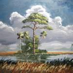 """Slash Pine Tree with Wind and Rain"" by mazz"