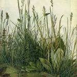 """The Tall Grass"" by ArtLoversOnline"