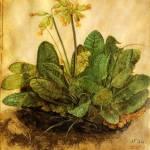 """Tuft of Cowslips"" by ArtLoversOnline"