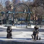 """""""Tadpole Playground"""" by WashingtonPhoto"""
