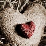 """""""Organic heart"""" by LeonaParadoxa"""