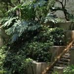 """""""The Garden"""" by dlstein"""