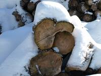 snow-covered firewood