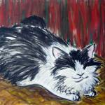"""""""Black and White Barn Cat"""" by tagscats"""