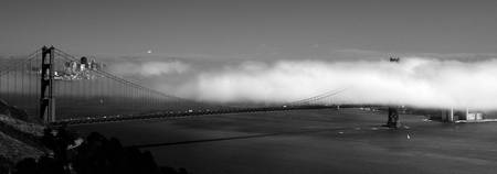 fog in the bay