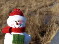 Snowman waiting for Christmas 7