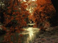 Autumn Riverview