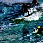 """""""Surfin"""