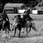 """Rodeo"" by ArtFocus"