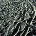 """Tracks"" by jasper"