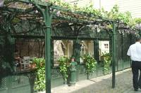 Pretty restaurant covered in Grape Vines, Istanbul