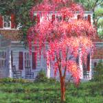 """Weeping Cherry by the Veranda"" by susansartgallery"