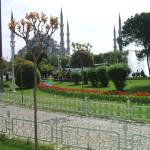 """Landscaped Gardens opposite Blue Mosque, Istanbul"" by TravelShotsbyZaralee"