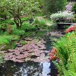 """""""Pond with Lily-Pads, Japanese Gardens"""" by TravelShotsbyZaralee"""