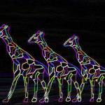 """Neon Giraffe Rainbow"" by magins"