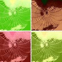 Pop Art Spider Web