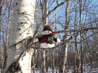 My snowman in a tree 3 (DETAIL)