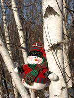 My snowman in a tree 5 (DETAIL)