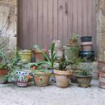 """""""Flower Pots, Girona, Spain"""" by JSD"""