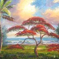 RoyalPoinciana gallery