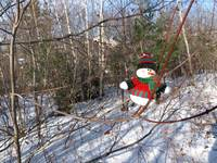 A snowman waiting for Christmas 6