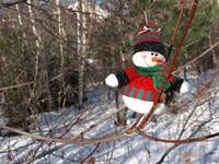 A snowman waiting for Christmas 7