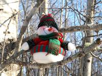 A snowman waiting for Christmas 9