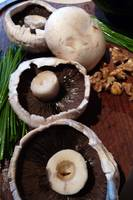 Portobello Mushrooms(3)