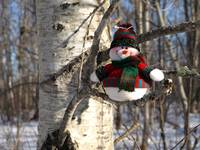 A snowman waiting for Christmas 10 (DETAIL)