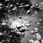 """Cathrens Creek B&W (2)"" by alexrice"