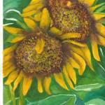 """Sunflowers"" by ClaraM"