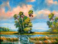 Florida Everglades Wind