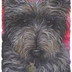 """DOG - Cairn Terrier"" by funkybrush"