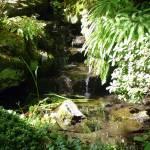 """Water Garden"" by ArmyArt"